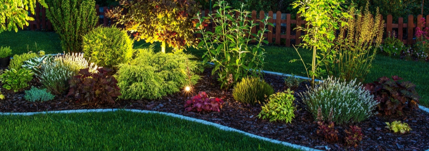 professional landscape lighting st. louis - landscape lighting company st. louis - landscape lighting professional